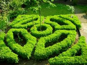 knot garden 2008