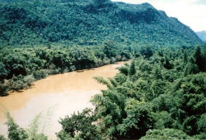 Wang Po area 1980s