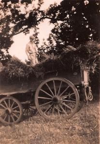 John on farm apprenticeship