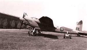 Mosquito ML935